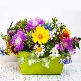 Kwiaty z ogrodu olejek zapachowy