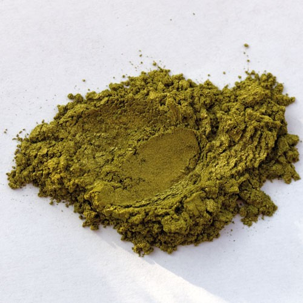 Złoty Mech - pigment perłowy