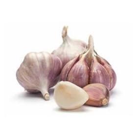 Czosnek (Allium sativum) olejek eteryczny
