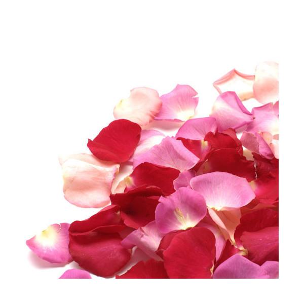 Grejpfrut, róże i neroli - esencja zapachowa