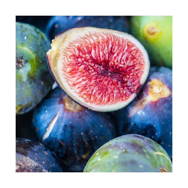 Fig & Vanilla, esencja zapachowa