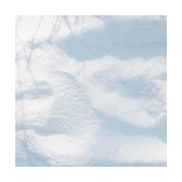 Królowa śniegu - brokat o drobnym ziarnie