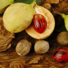 olejek eteryczny z gałki muszkatołowej