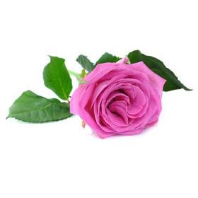 Róża - aromat kosmetyczny