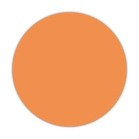 Pomarańczowy dyniowy MP