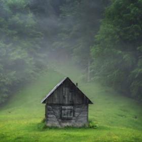 Jodłowy las - esencja zapachowa
