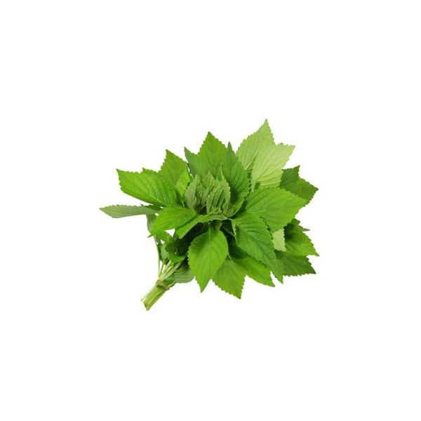 Cytrynowa werbena olejek zapachowy