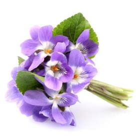 Fiołek - esencja zapachowa