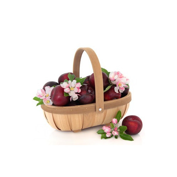 japońska śliwa olejek zapachowy