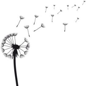 Wiatr w liliach - esencja zapachowa